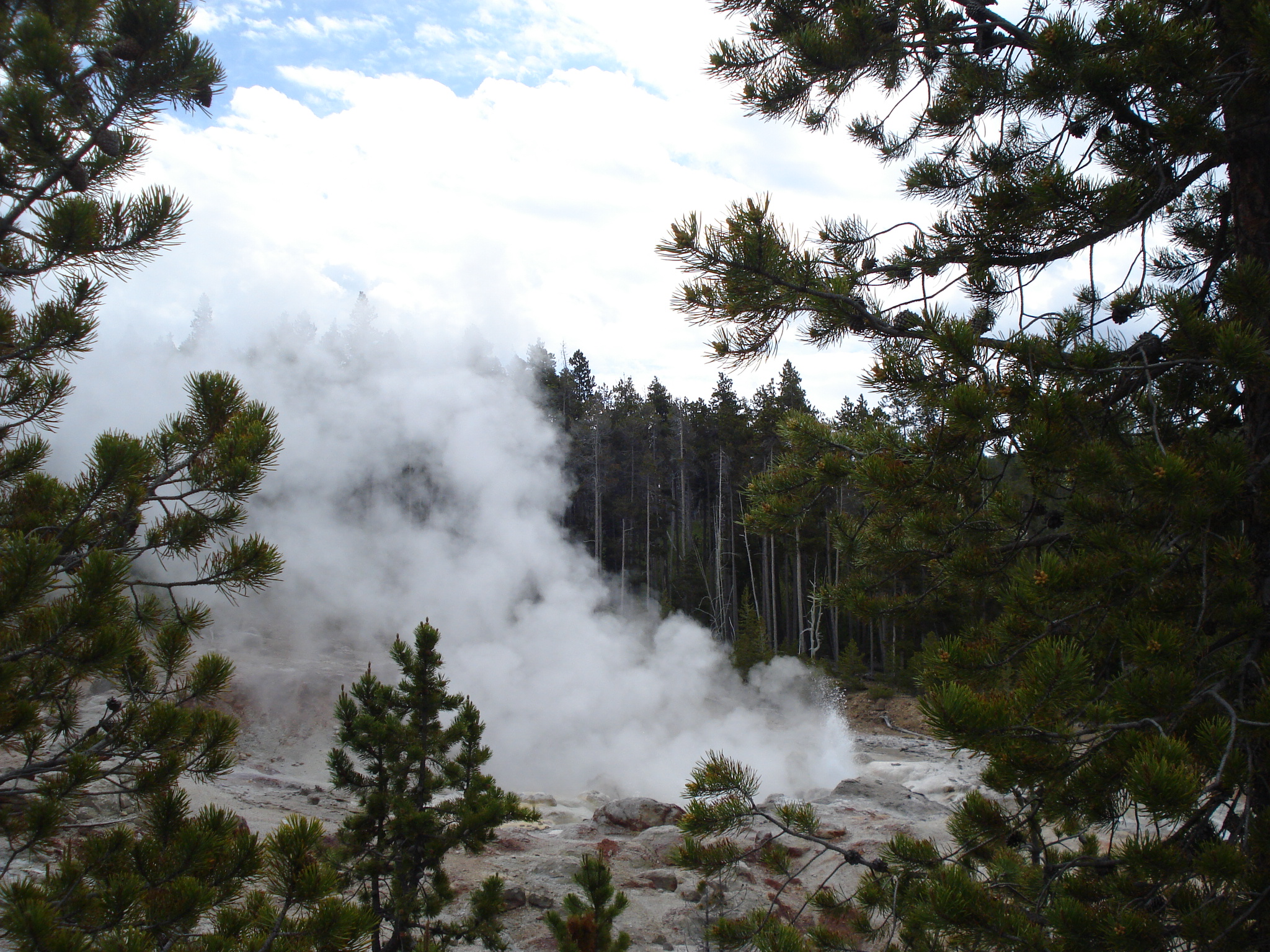 Steam from Geysers in Yellowstone