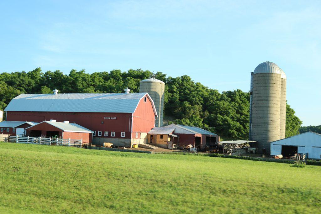Farm In Wisconsin