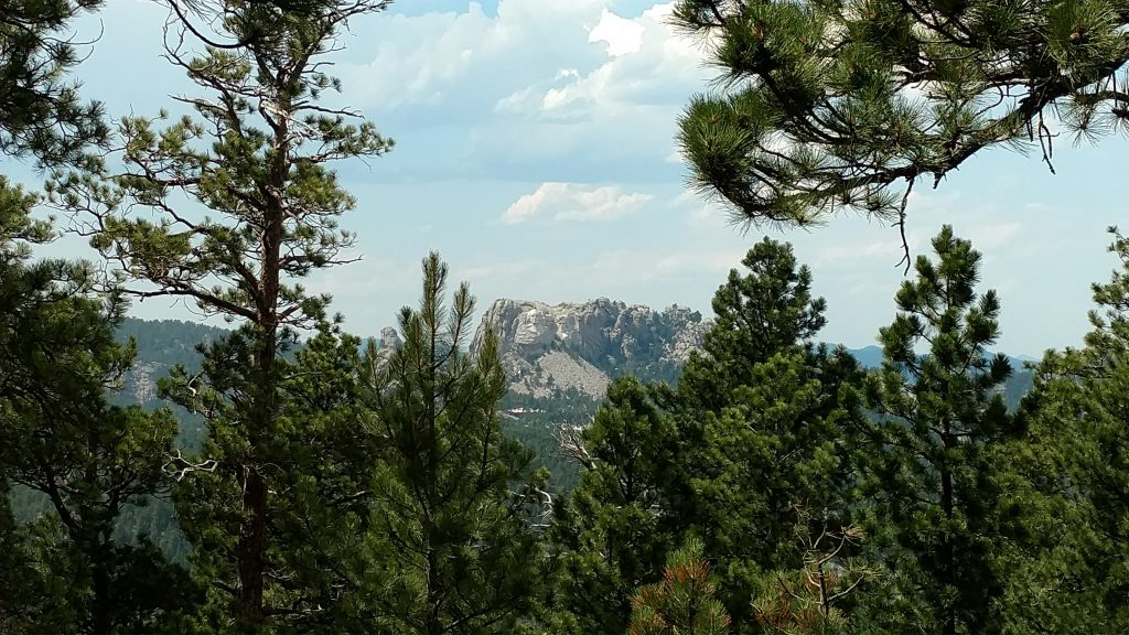 Mount Rushmore through Trees
